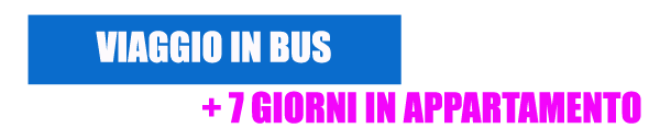 Viaggio_Bus